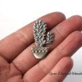 Kaktus srebrny