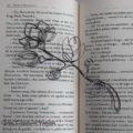 Srebrna zakładka do książki na prezent